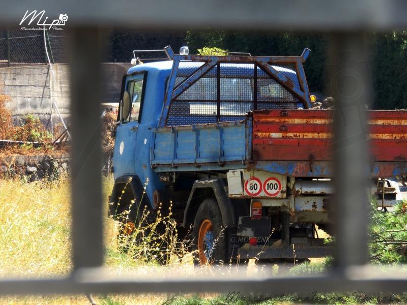 Veicoli commerciali e mezzi pesanti d'epoca o rari circolanti - Pagina 2 Fresia_F90_C_5