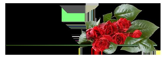 Разделители: цветы - Страница 2 16NFm