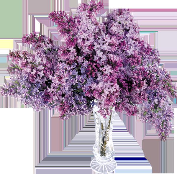 Клипарты: цветы - Страница 4 GQt3h