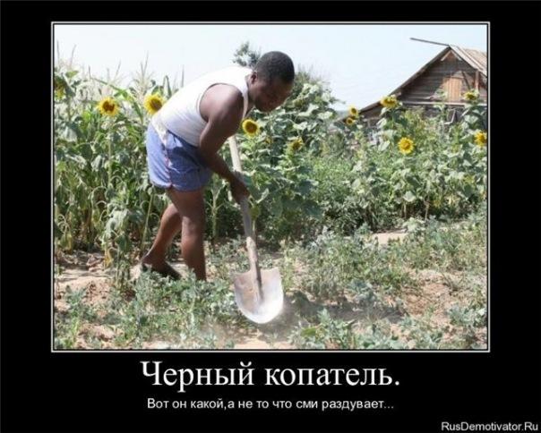 Смех продлевает жизнь :) - Страница 11 IGrhw