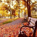 Осенние аватарки - Страница 2 G2ua5
