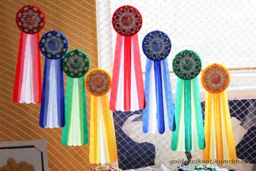 Наградные розетки на заказ - Страница 4 IEDkn