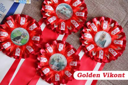 Наградные розетки на заказ от Golden Vikont - Страница 7 LkFZN