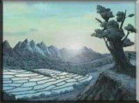 Территория деревни Звука