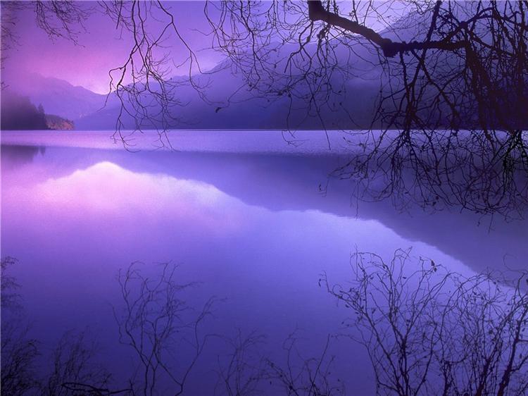Фиолетовое озеро 5dd0731495e2t