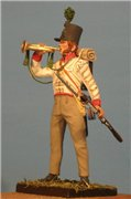 VID soldiers - Napoleonic british army sets C09f4881a9bet