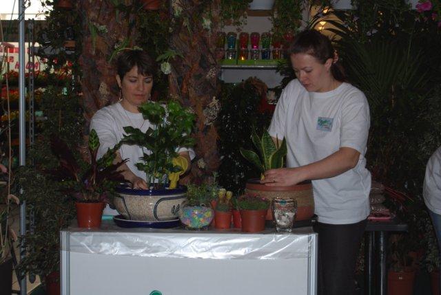 Международая выставка «Цветы.Ландшафт .Усадьба 2010» Астана - Страница 4 Dffdd2094456