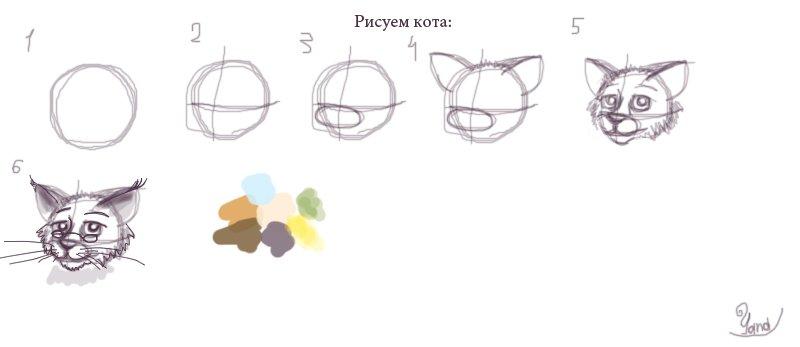 Рисуем кота (разработка) 88bb7def87b3