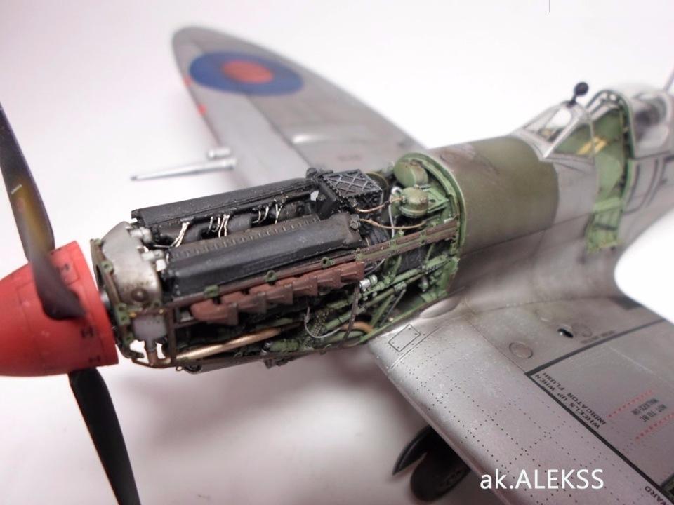 Supermarine Spitfire Eduard 1/48 Edbc7aaeaa95