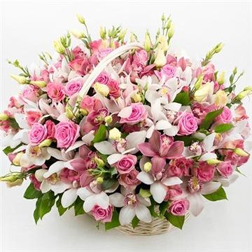 Поздравляем с Днем Рождения Марину (Мариса) 14dfc4315024t