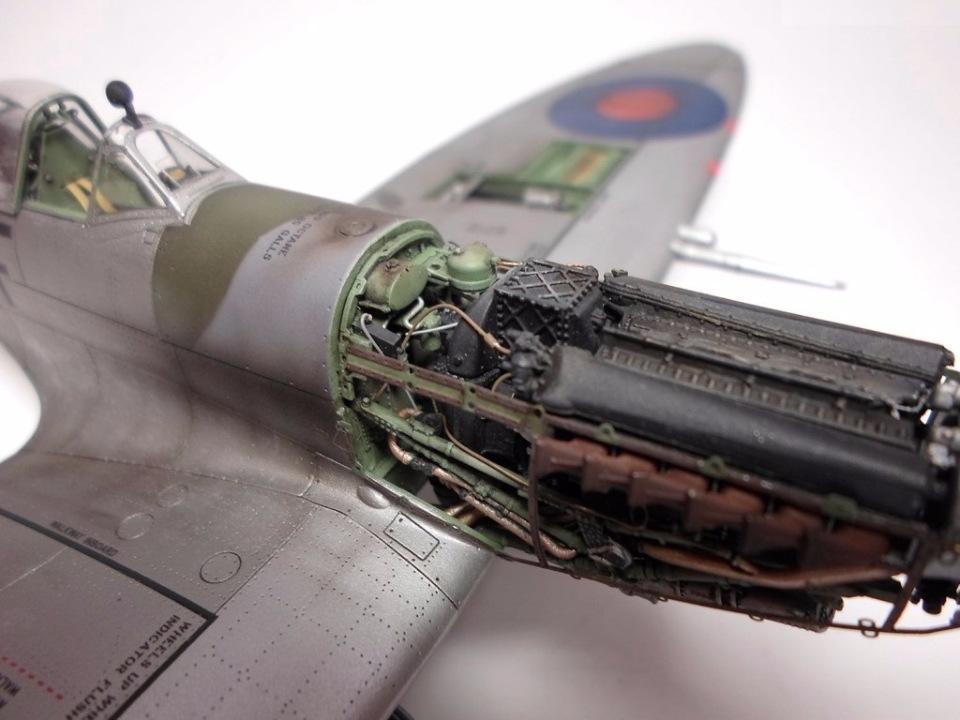 Supermarine Spitfire Eduard 1/48 201b48ff908b