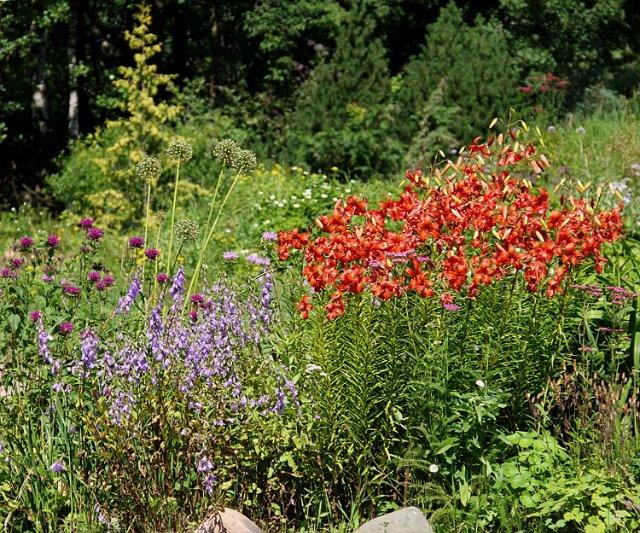 Экскурсия по Ботаническому Саду 8f20ebfa90e1