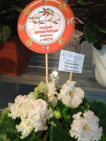 Выставка цветов - Страница 2 0e89c4c7597e