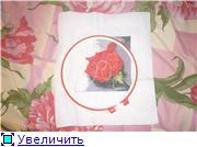 """вот так  растут мои  """"крестовые"""" цветы... F51095a4ed27t"""