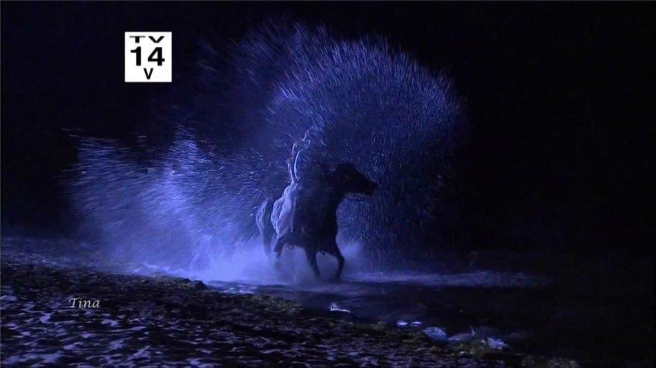 Призрак Элены / El Fantasma de Elena - Страница 2 4d3e8957bcc3