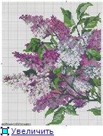 Схемы вышивки - Страница 2 12ff523ab251t