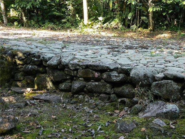 Costa Rica. Центральная Америка. - Страница 17 73c19958322b
