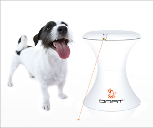 Интернет-зоомагазин Red Dog: только качественные товары для собак и кошек! D1dd4e95550a