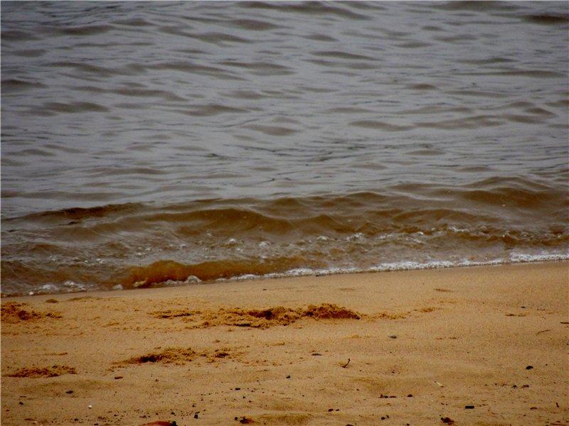 Фотографии рек и речных судов 104376a63706