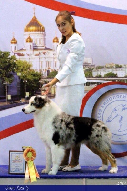 РОССИЯ - Страница 11 5109398a99cc
