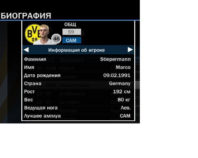 свободные агенты борусии Dcf0179fc08b