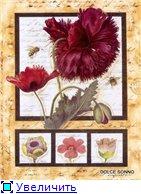 Цветы, букеты 6f4868ae8a7ct