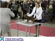"""ЕВРАЗИЯ-2012"" 397e3d573c56t"