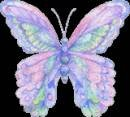 Цветы и бабочки C86c48306652