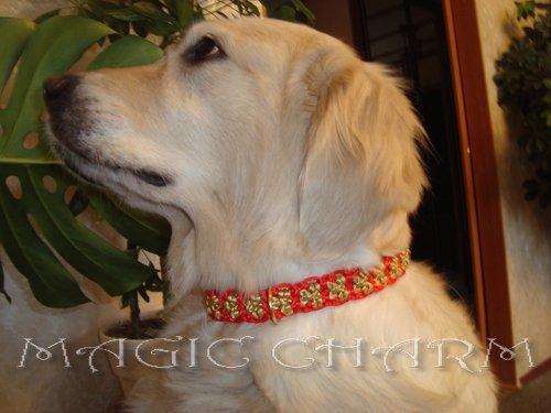 MAGIC CHARM - обереги, ошейники, украшения, ринговки и другие аксессуары для  собак и кошек. 0d00f32a4e41