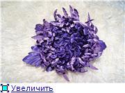 Астры и хризантемы 1588d726ef24t