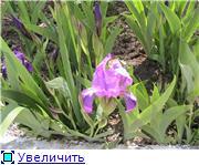 Курорт Шмаковка Ac6feddc626at
