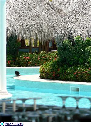 Привет из Доминиканы F9290f1aae4dt