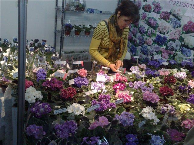 «Цветы.Ландшафт и Приусадебное хозяйство Весна - 2010» 1949fc89b68b