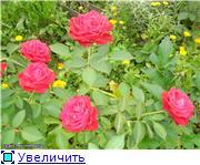 Specially for Karkela )))    Тестирование сербок и проч. - Страница 3 23b57d8d43a7t