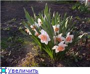 Весна идет, весне дорогу! - Страница 8 036b288f9e8ct
