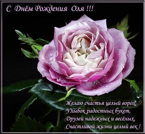 Поздравляю Ольгу Степанову- Ерашову С Днем Рождения! C15f02de1620