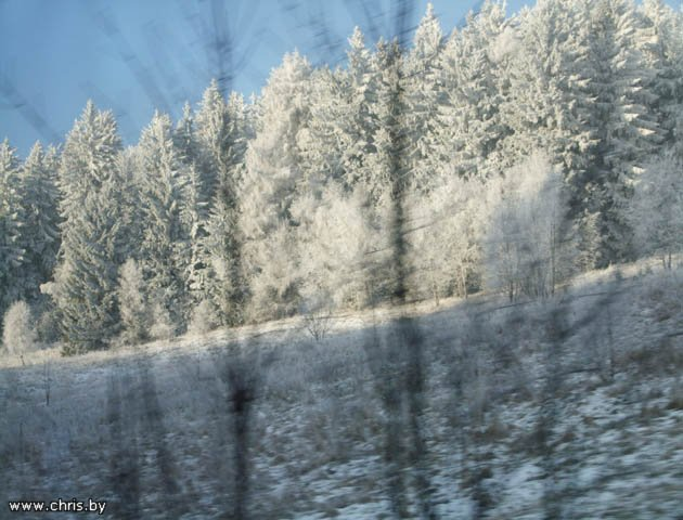 Встреча Нового года 2009 -Польша-ПРАГА-Карловы Вары-Дрезден D4eb45983706