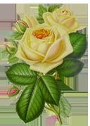 Элементы декора - Страница 9 24305a655fd1