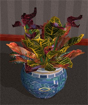 Цветы для дома 9c68c2075bf5