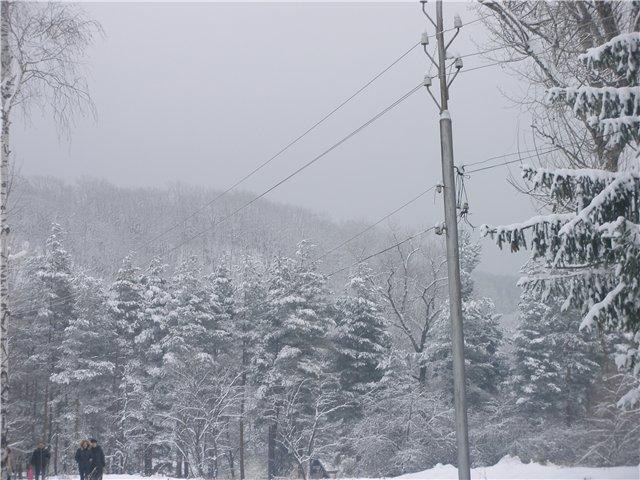 """""""Зимушка, зима...."""" 6f6c05796659"""