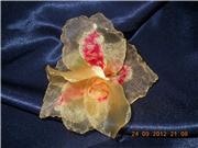 Совместное творение цветов из лент - Страница 2 C086d01a2b23t