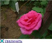Specially for Karkela )))    Тестирование сербок и проч. A22bc1620070t