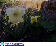 Весна идет, весне дорогу! - Страница 8 Ac08711853d2t
