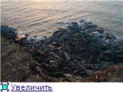 Обвал глинта на полуострове Пакри в Марте 2008 года. (Видео и фото) Cc22c8638dd2t