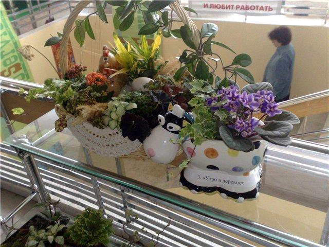 «Цветы.Ландшафт и Приусадебное хозяйство Весна - 2010» Aea8dc702dd3