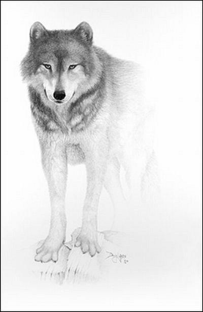 Рисунки Doug Landis 47917ea4f933