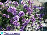 ЧТО, ГДЕ, ПОЧЕМ. Москва - Страница 10 4d43358af313t