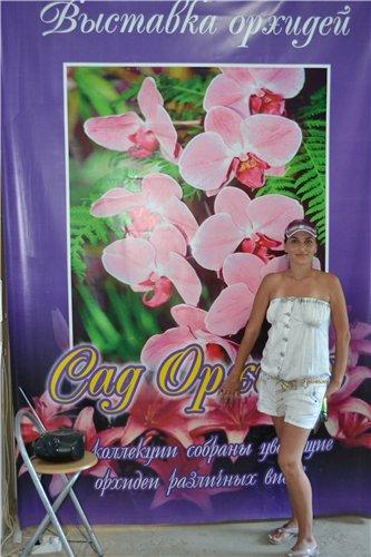 Выставка орхидей Никитского ботанического сада B3cddb853780