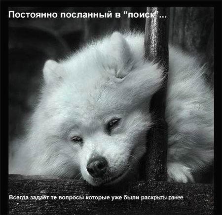 Фотогалерея форумчан Ae07866b8c86