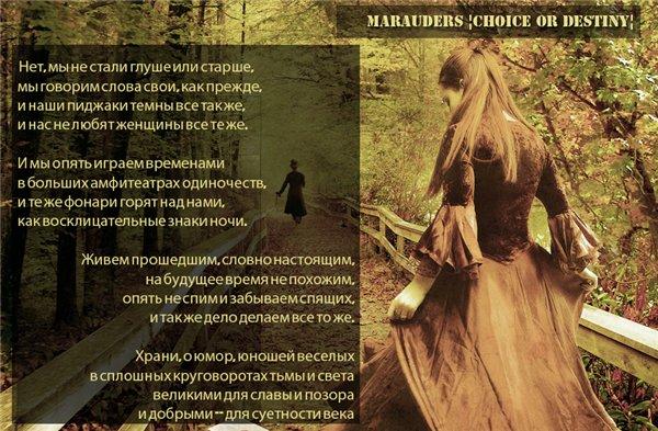 Реклама ролевых по Гарри Поттеру Defc0e75985d